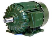 Emtaş Asenkron Elektrik Motoru