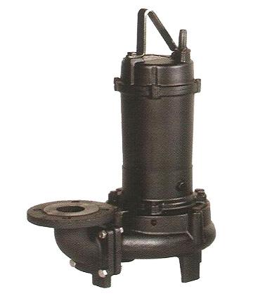 DF - Ebara Foseptik Dalgıç Pompası